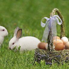 La Croisee-Easter